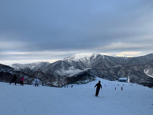 山頂付近からの景色