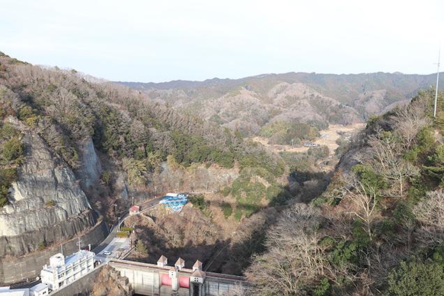 竜神大吊橋からの景色
