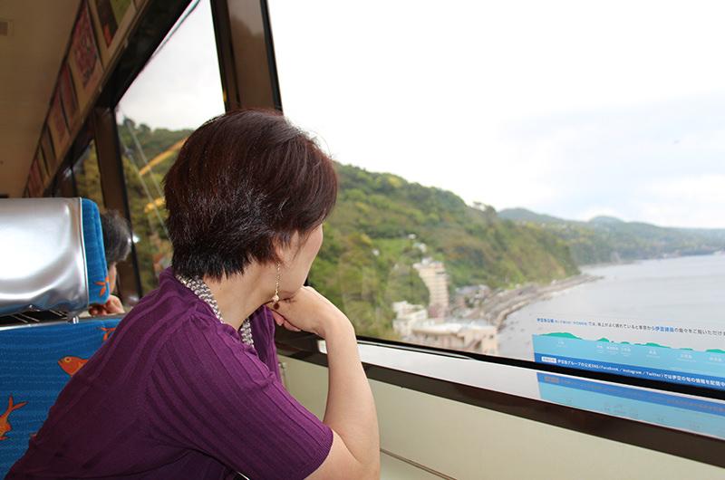 伊豆急行線の車窓