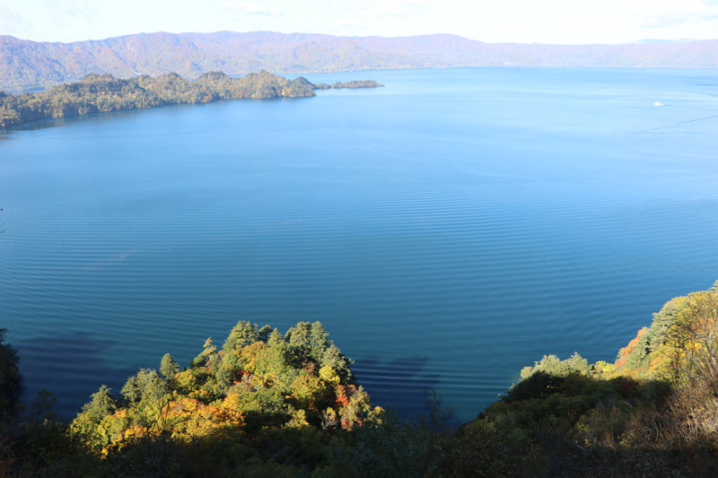 十和田湖の湖畔は豊かな緑に囲まれていて、散歩にぴったり