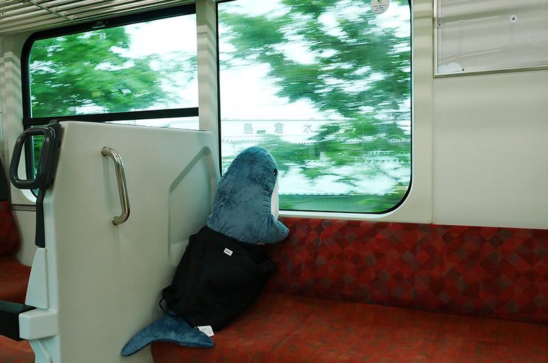 八戸線とサメのぬいぐるみ