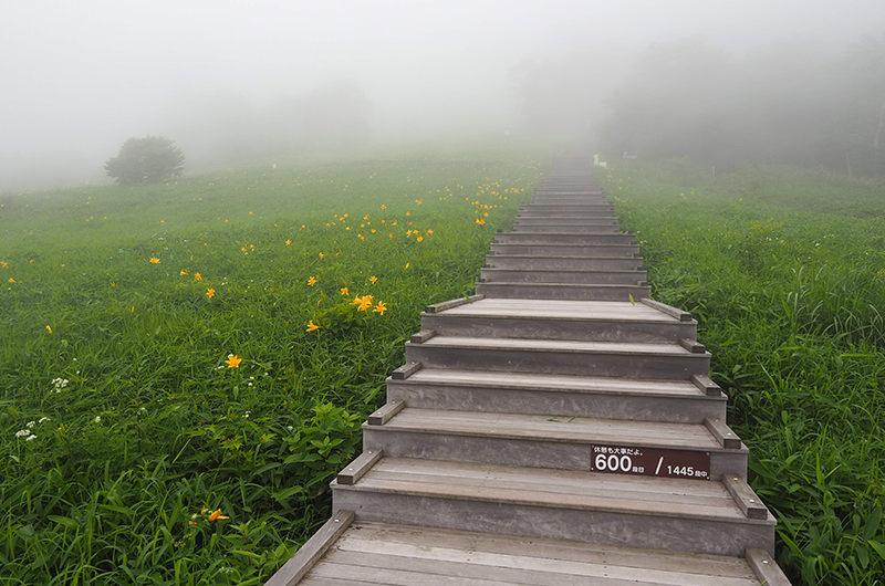 1,445段の階段