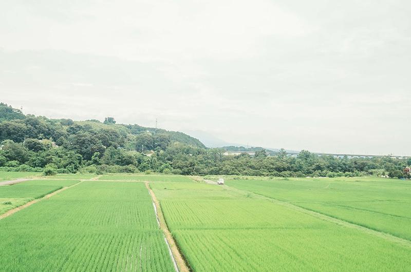 JR小野上駅付近の車窓