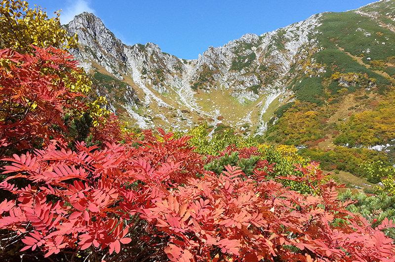千畳敷カールと色づいた紅葉