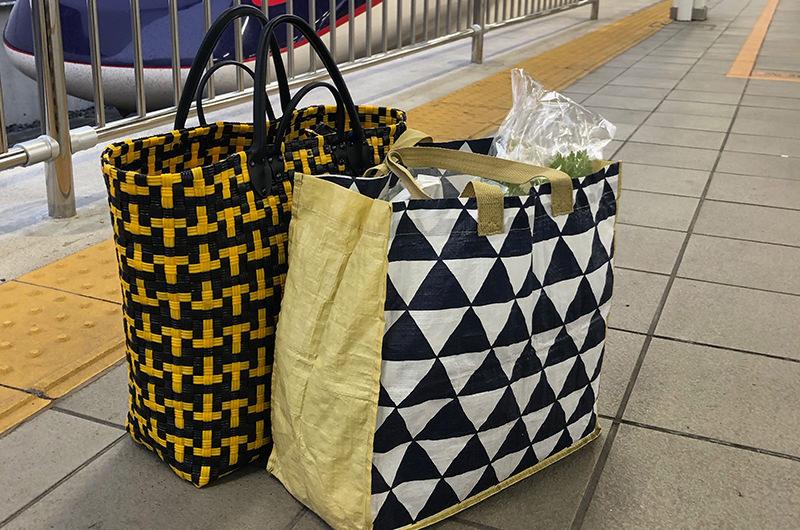 旅行用のメインバッグとサブバッグ