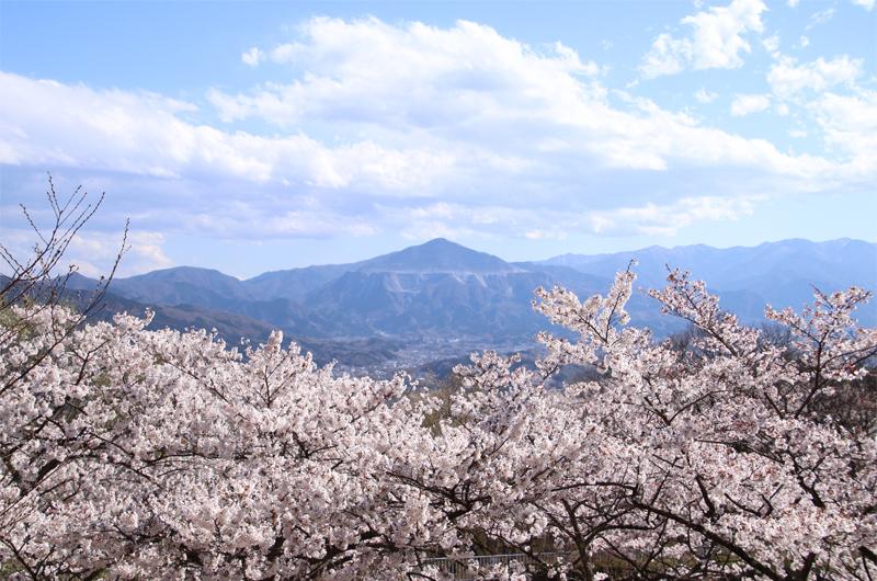 簑山 山頂の景色