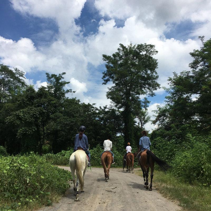 赤城乗馬クラブビジター外乗 陸地での乗馬の様子