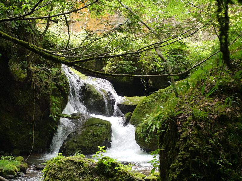 千巌渓を流れる滝