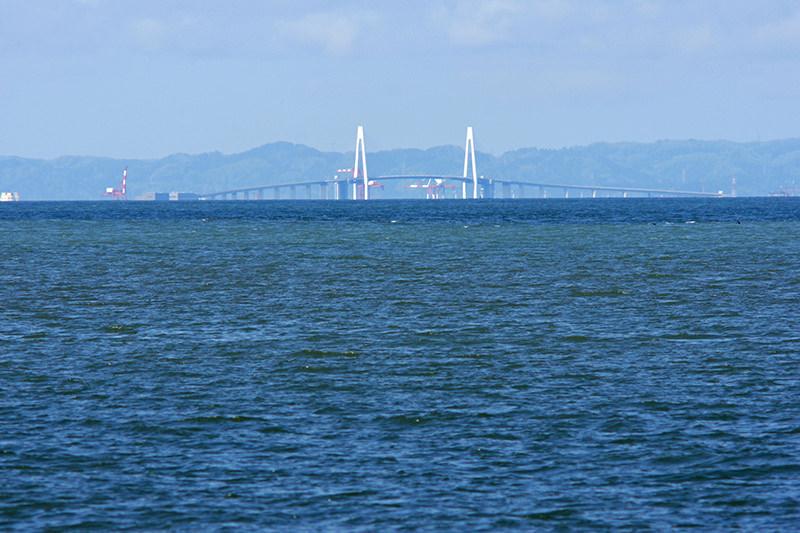 新湊大橋の実景