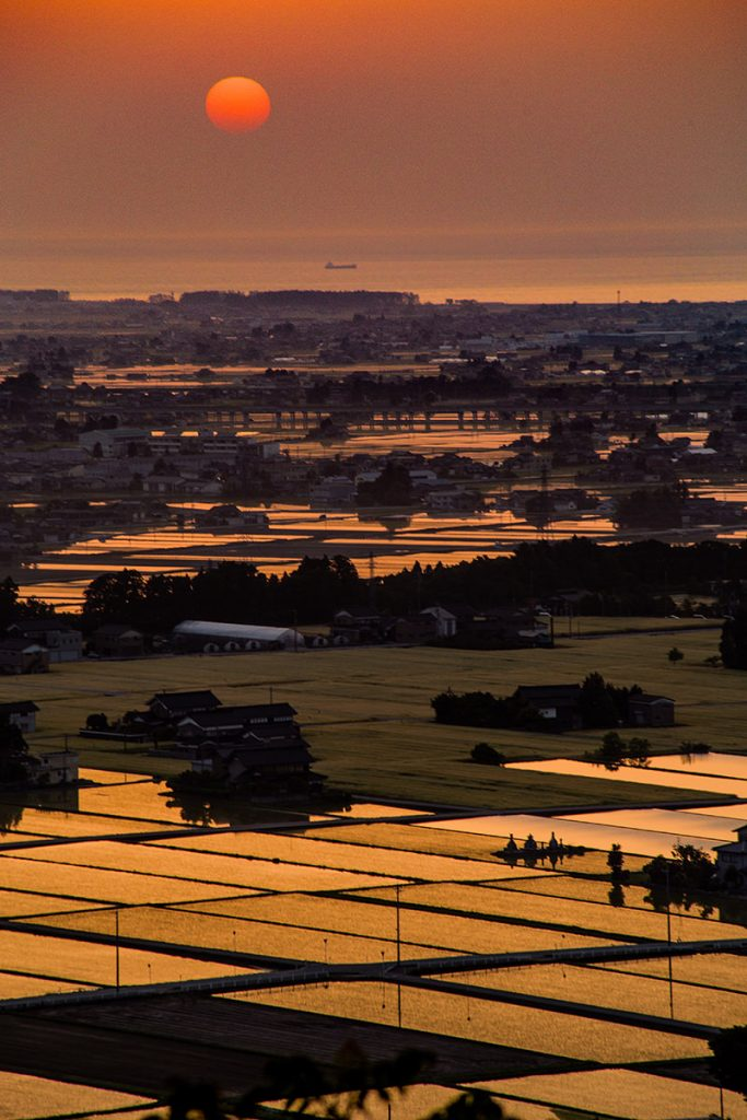 田んぼと夕日の絶景