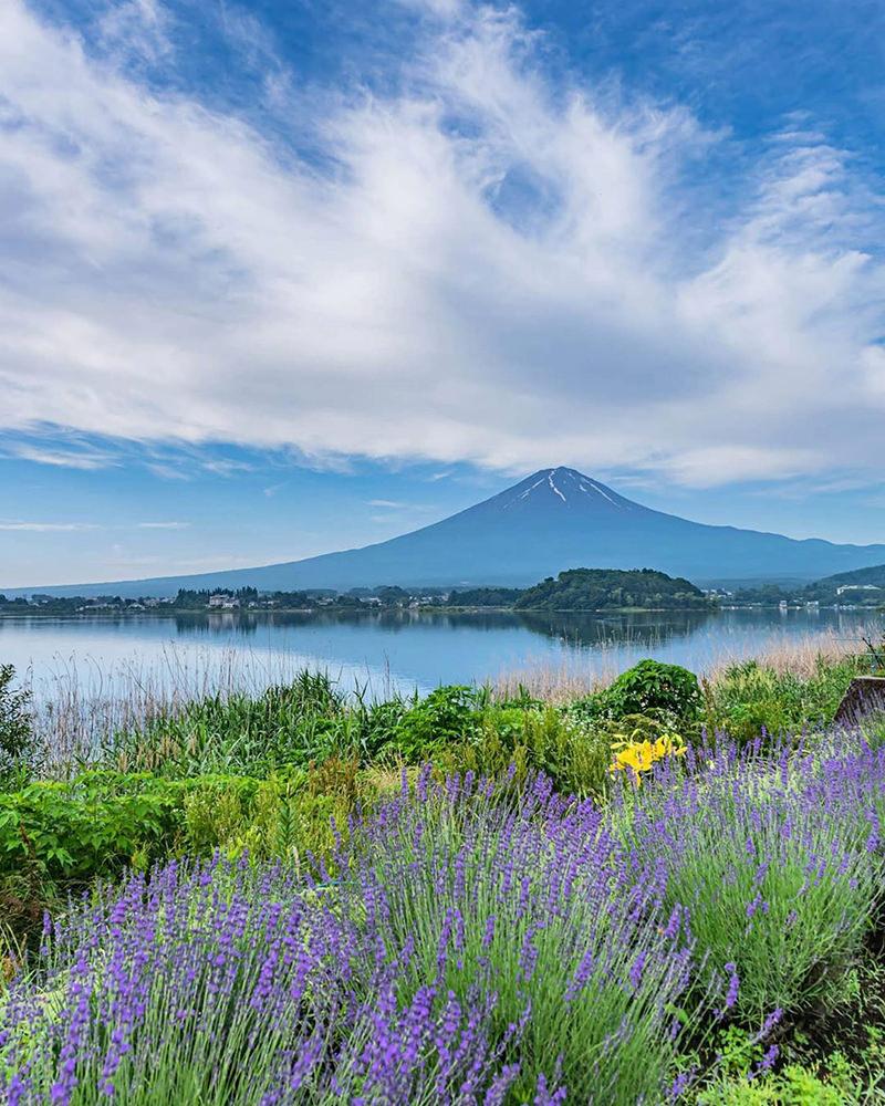 河口湖からの富士山の景色