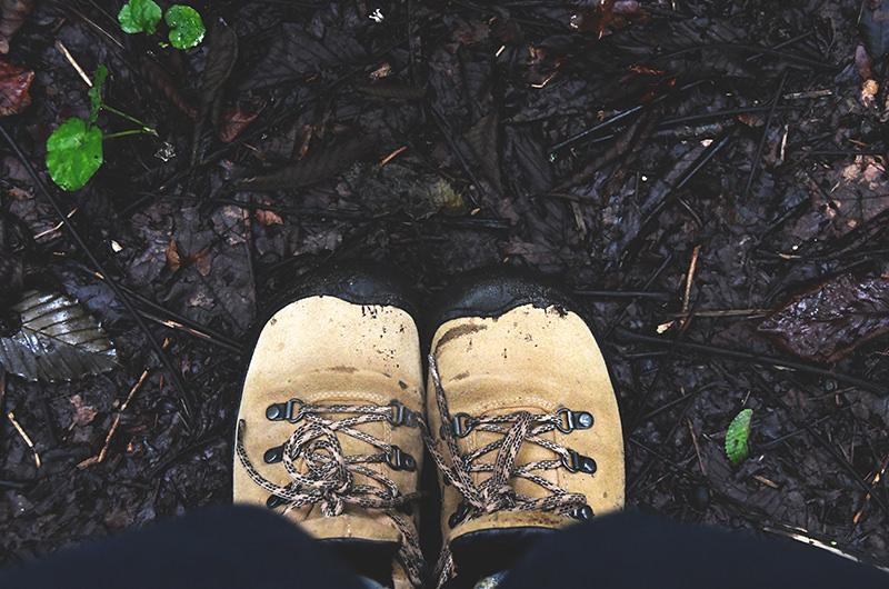 遊歩道の地面