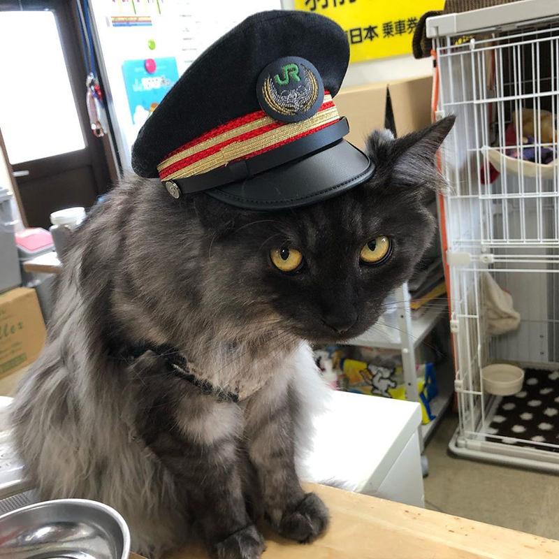羽前小松駅のショコ・ラ・ダリヤ駅長