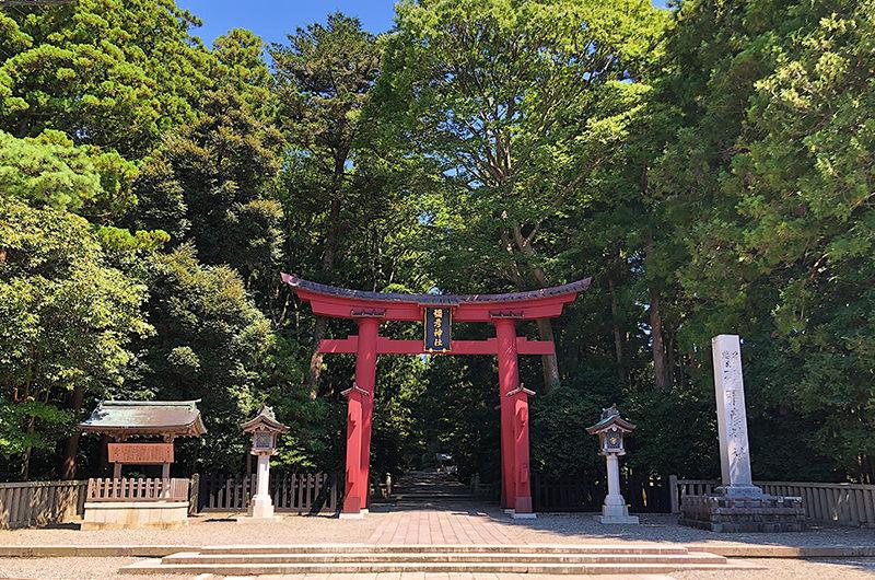 今行きたいパワースポット、彌彦神社。弥彦公園や温泉、パンダ焼きも!