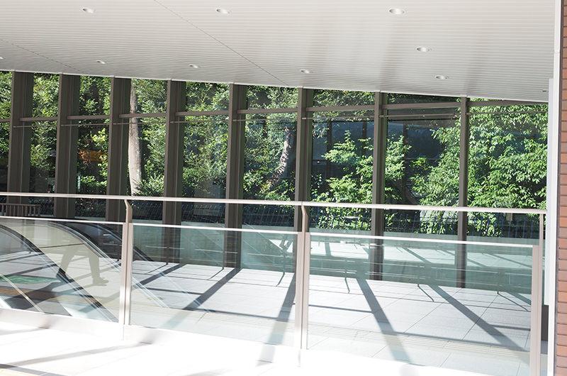 原宿駅から明治神宮の緑が見える