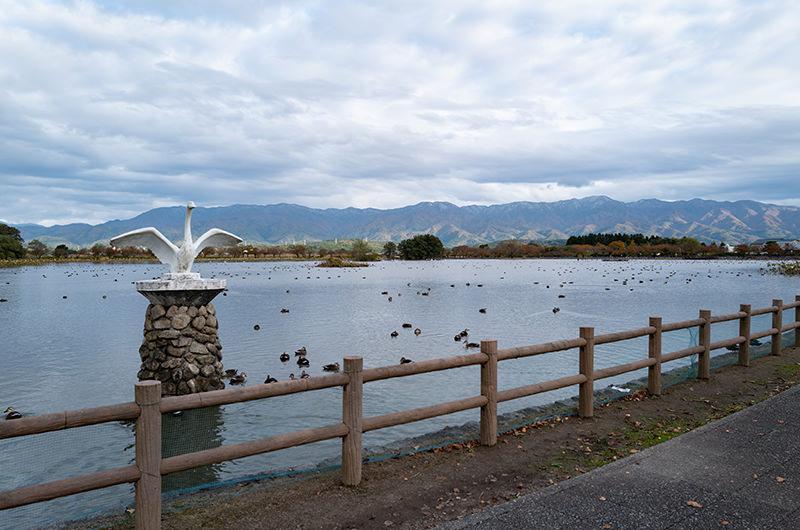 瓢湖 白鳥のモニュメント