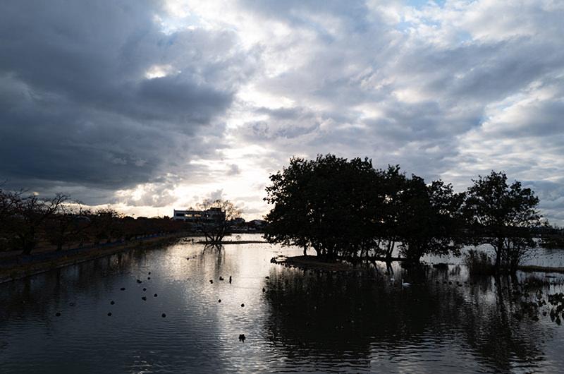 日が暮れていく瓢湖