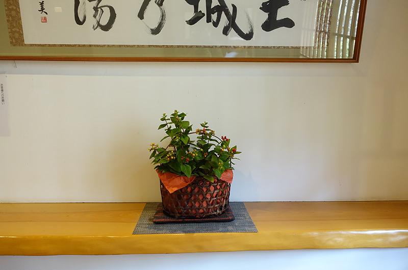 長寿館 飾られた花