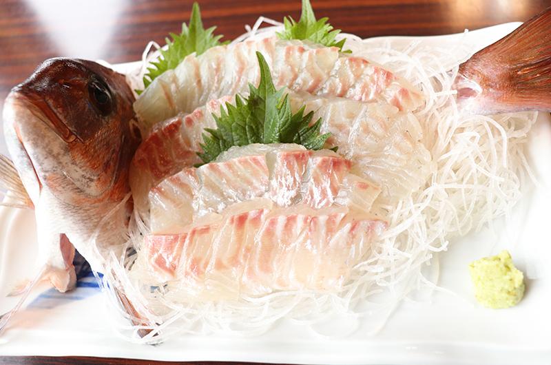 手ぶらOK&すぐ食べられる!熱海で夢のような釣り体験を