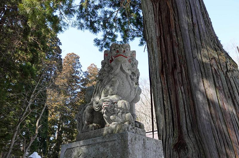 戸隠神社 中社 狛犬