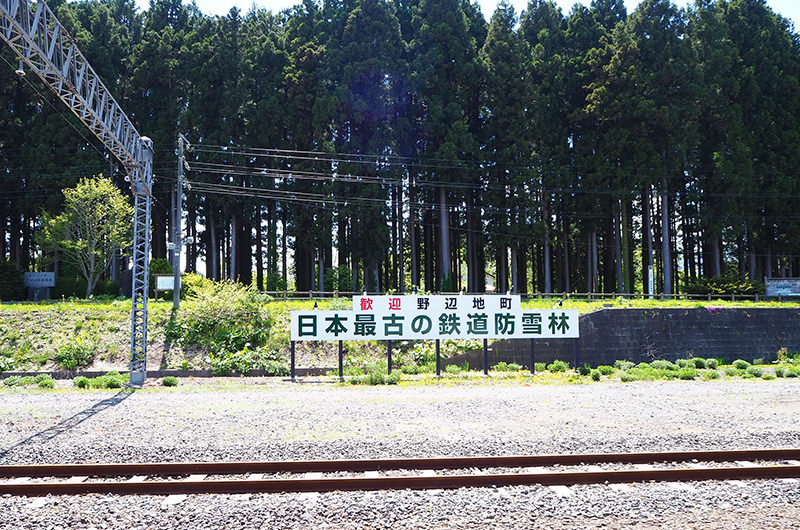 野辺地駅 日本最古の鉄道防雪林