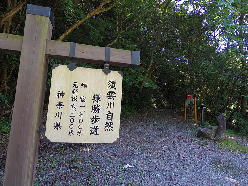 箱根旧街道 登山口